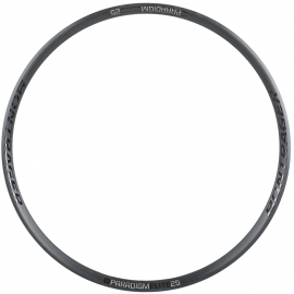 Paradigm Elite 25 Disc Rim